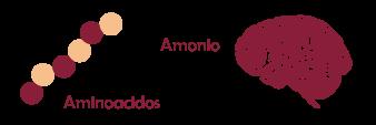 amonio